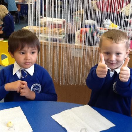 Fruit taste testing - The apple gets a thumbs up!