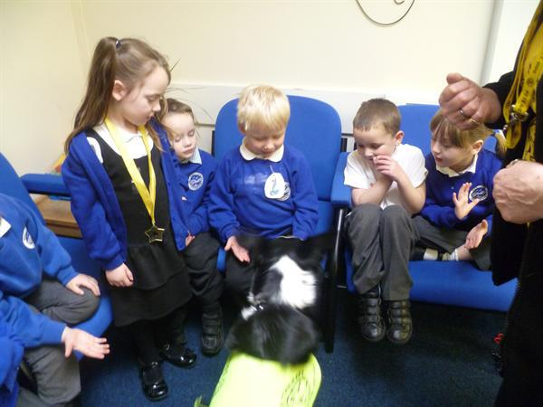 Jan 2013 Meeting Jazz the PAT dog!