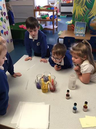 Science week - we made colours travel