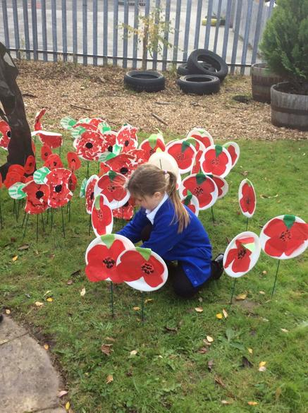We 'planted' our poppies in the school garden