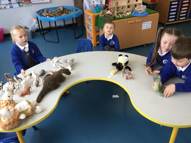 We sorted them by counting their legs.