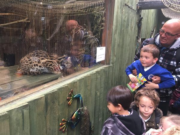 June 2017 - Trip To Greenacres Animal Park