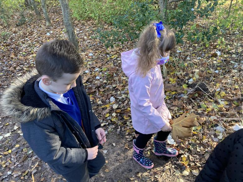We looked for sticks and leaves