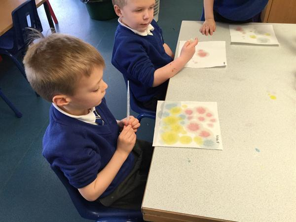 Science week - painting with colours