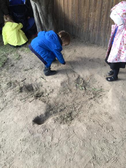 We also saw a huge footprint! Was it the Giant's?