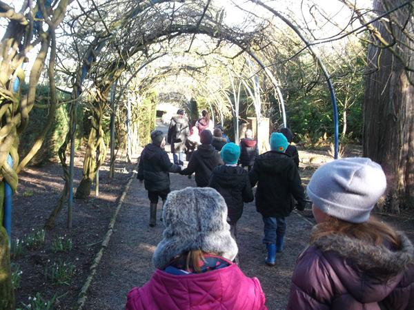Woodland Visit