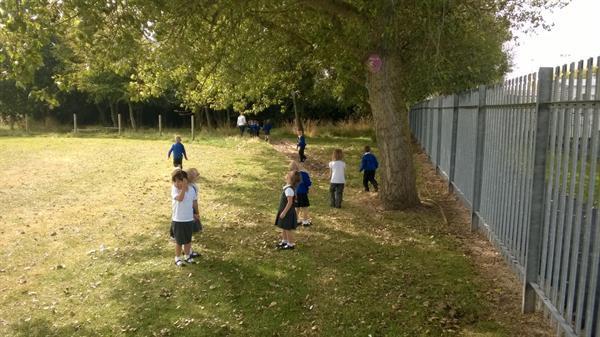 Sep 2014 - Woodland Walk