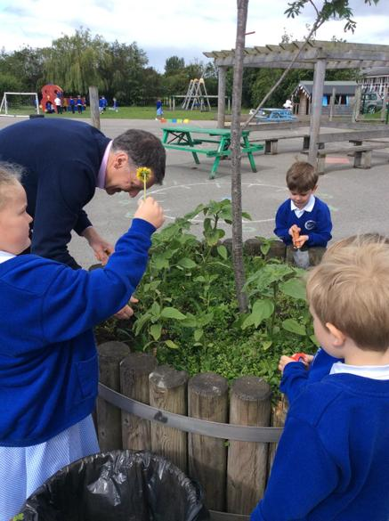 Reception classes got busy to tidy our planters