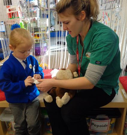 Looking after monkey with the vet