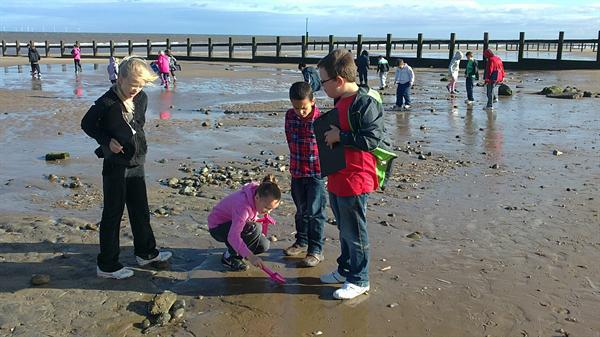 Ysgol Bryn Hedydd Beach Day!