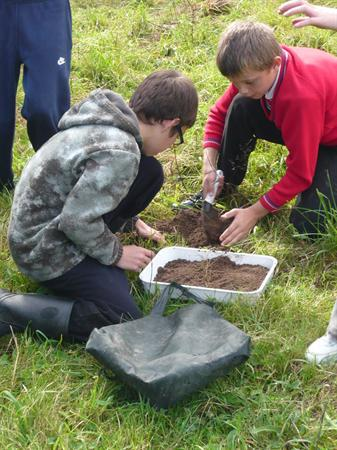 Collecting specimens in the meadow.