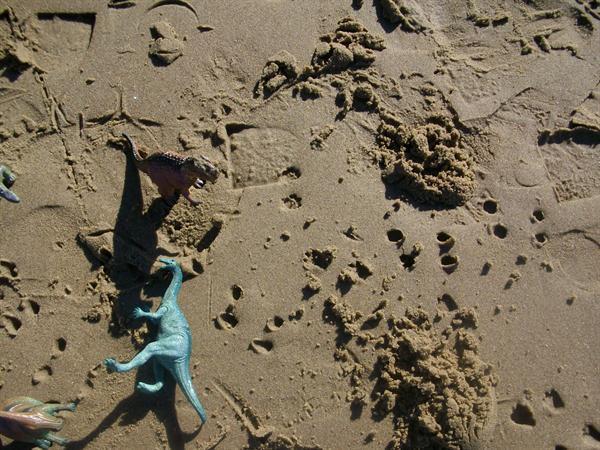 Making dinosaur footprints...