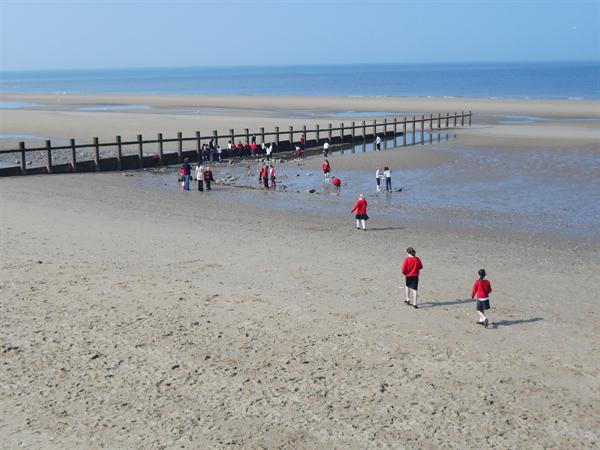 What a lovely afternoon down the beach!