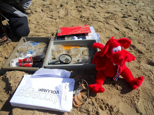 Dafydd is ready & waiting to learn more about sand