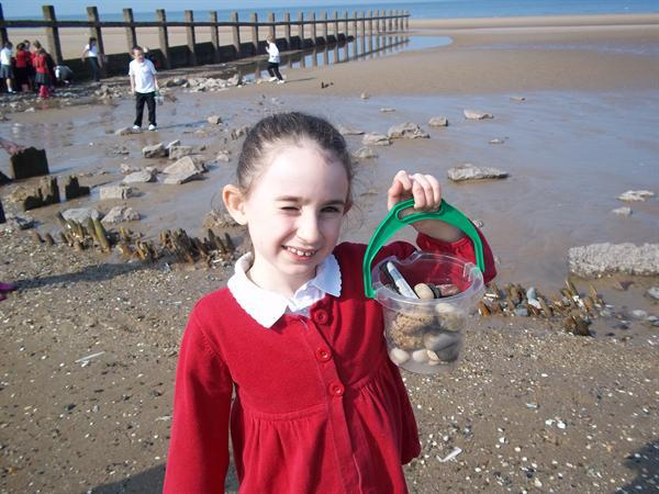 Year 3 learn all about the beach!