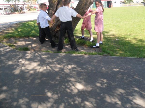 6 children round our school tree!