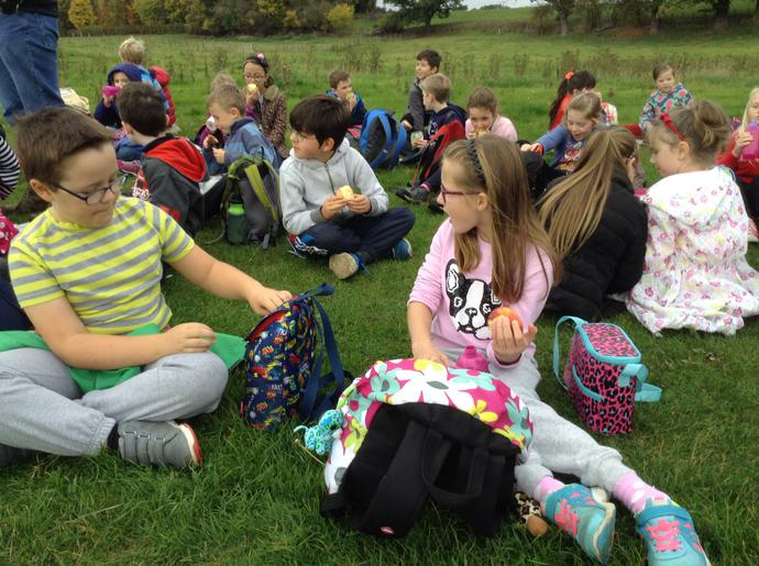 eating on field on the sponsored walk