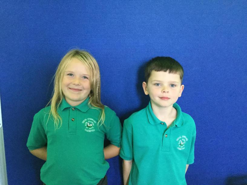 Cyngor Ysgol / School Committee